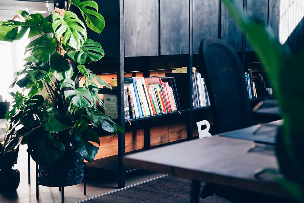 Bücherregal in der VIAl Digitalagentur